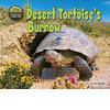 Cover: Desert Tortoise's Burrow