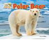 Cover: Polar Bear