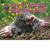 Cover: How Do Animals Help Make Soil?