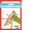 Cover: I See Grasshoppers