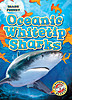 Cover: Oceanic Whitetip Sharks