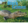 Cover: Black Caiman