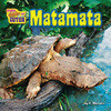 Cover: Matamata