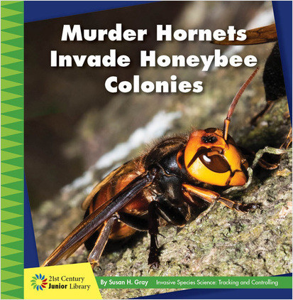 Cover: Murder Hornets Invade Honeybee Colonies