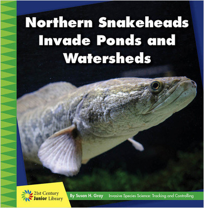 Cover: Northern Snakeheads Invade Ponds and Watersheds