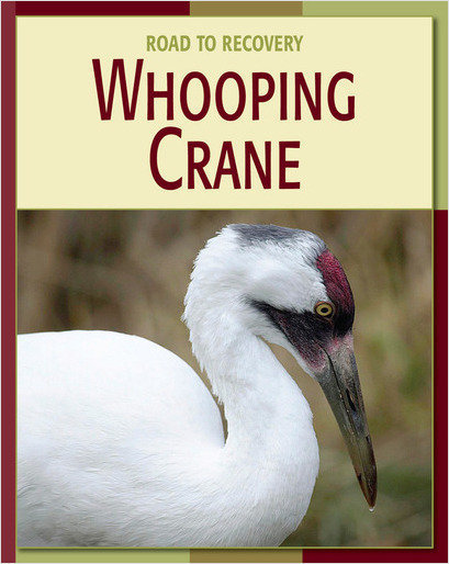 Cover: Whooping Crane