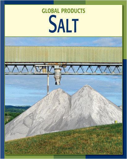 Cover: Salt
