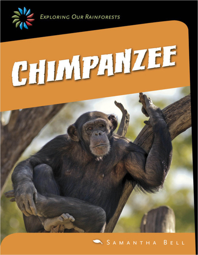 Cover: Chimpanzee