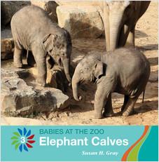 Cover: Elephant Calves