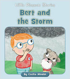 Cover: Bert and the Storm