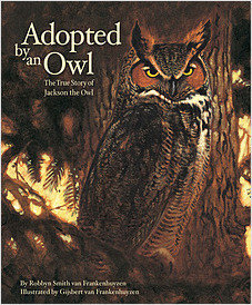 Cover: Adopted By An Owl: The True Story of Jackson the Owl