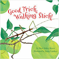 Cover: Good Trick Walking Stick