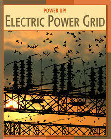 Cover: Electric Power Grid