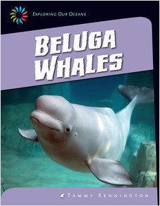 Cover: Sea Creatures