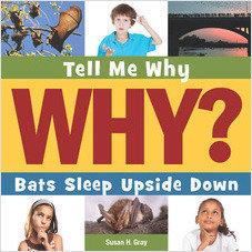 Cover: Bats Sleep Upside Down