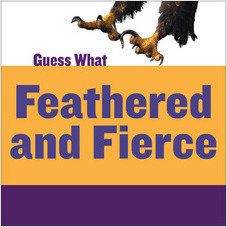 Cover: Feathered and Fierce: Bald Eagle