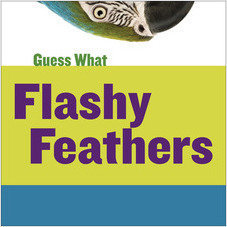 Cover: Flashy Feathers: Macaw