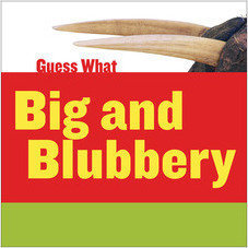 Cover: Big and Blubbery: Walrus