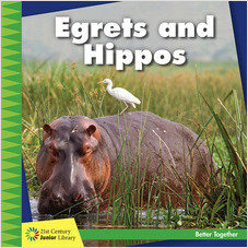 Cover: Egrets and Hippos