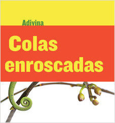 Cover: Colas enroscadas (Twisty Tails): Camaleón (Chameleon)