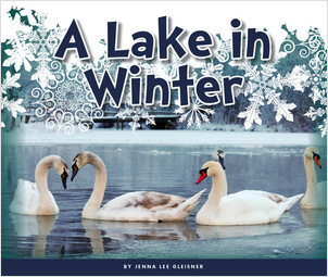 Cover: A Lake in Winter