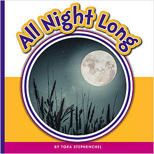 Cover: All Night Long