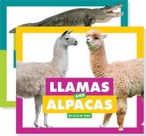 Cover: Animals Bundle