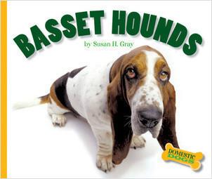Cover: Domestic Dogs