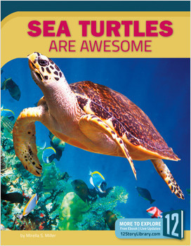 Cover: Sea Turtles Are Awesome