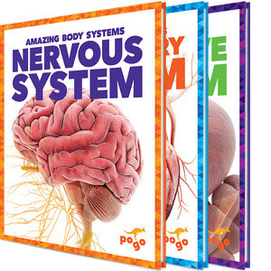 Cover: Amazing Body Systems