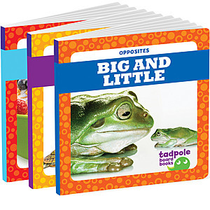Cover: Opposites Board Book Edition