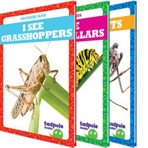 Cover: Backyard Bugs