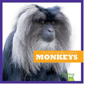 Cover: Monkeys