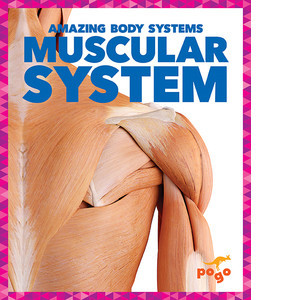 Cover: Muscular System