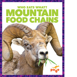 Cover: Mountain Food Chains