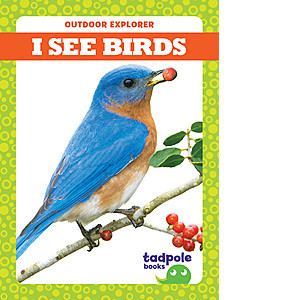 Cover: I See Birds