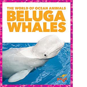 Cover: Beluga Whales