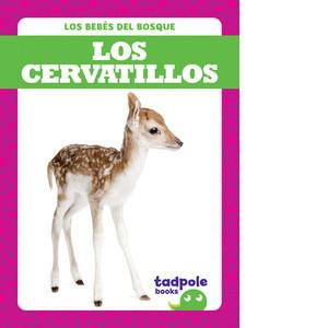 Cover: Los cervatillos (Deer Fawns)