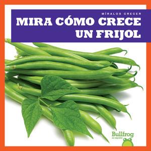 Cover: Mira cómo crece un frijol (Watch a Bean Grow)