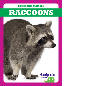 Cover: Raccoons