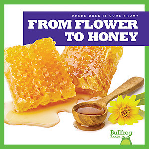 Cover: From Flower to Honey