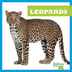 Cover: Leopards