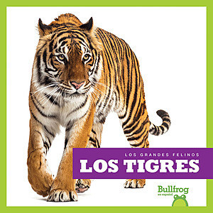 Cover: Los tigres (Tigers)