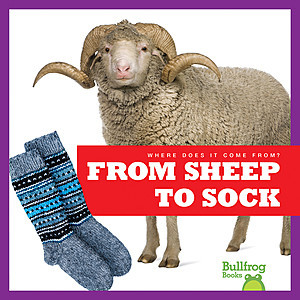 Cover: From Sheep to Sock