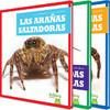 Cover: Un vistazo a las arañas (An Eye on Spiders)