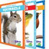 Cover: Backyard Animals