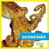Cover: Octopuses