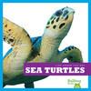 Cover: Sea Turtles