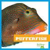 Cover: Pufferfish
