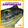 Cover: The World's Biggest Amphibians